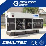 Conjunto de generador diesel ultra silencioso 30kVA para el uso casero