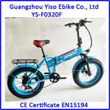 كبيرة فتى إطار العجلة يخفى بطّاريّة كهربائيّة يطوي درّاجة