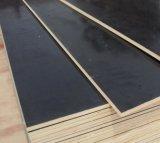 La película hizo frente al álamo/al abedul/a la madera contrachapada de las maderas duras para la construcción
