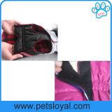 Il cane di animale domestico di inverno copre il rivestimento accessorio del cane