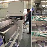 Première trieuse en plastique polychrome de vente de couleur de CCD de qualité, trieuse de couleur en plastique d'animal familier