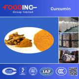 Curcumin bcm-95 van het Uittreksel van de Kurkuma van de Grondstof van China Groothandelaar