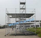 Zds SGSは構築のための足場Ringlockシステムを渡した