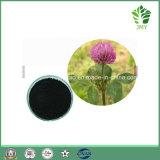 Isoflavonas naturais puras 8% ~ 80% Extracto de trevo vermelho