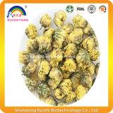 Vendita calda del tè di erbe del fiore del crisantemo