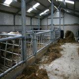 Vaca del metal vertida para la granja