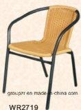 حد أثاث لازم [رتّن] كرسي تثبيت مع [ستيل فرم]
