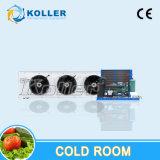 Unidad de refrigeración de la cámara fría