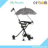 押し棒を持つ3/5人の車輪の赤ん坊Trikesか傘が付いているおもちゃの三輪車のコンパクトな乗車