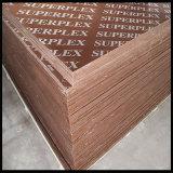 Plwood concreto usado no molde