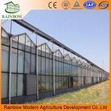 Hollow aislados edificio fachada vidrio invernadero para hortalizas y plantas