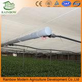 Venta caliente de acero galvanizado Po cine agricultura invernadero para comerciales