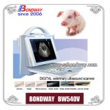 Ultrasound Swine for Imaging Pig, chèvre, mouton, chien, etc Bw540V