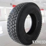 China todo el neumático de acero para el carro (13R22.5)