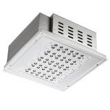 100W LED Luz Canopy (HZ-TJD100WS / P)