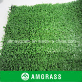 Gras van het Gras van het Hof van het Basketbal van het tennis het Kunstmatige (een-12A)