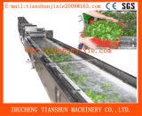 Pulitore Tsxq-50 della bolla della spuma della frutta Ss304 e della verdura