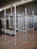 Cuplock Scaffolding para Construction para Industry