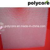 Painel do favo de mel do policarbonato