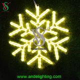 Hochzeitsfest-Dekoration-Licht mit guter Qualität