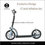 ライトはアルミニウムフレームのスクーター電気300Wの重量を量る