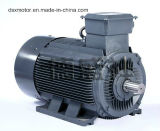 Ie2 Efficiency 250kw Three Phase Asynchronous Electric Motor WS Motor