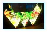 Forma especial The Creative Ox Horn LED Display