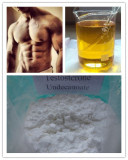 White Powder Testosterone Undecanoate Test U 98%