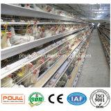 Быть фермером и клетки батареи кладя курицы яичка машинного оборудования