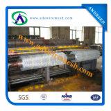 16ga. '' Fio de galinha galvanizado do engranzamento de fio da galinha X1 (exportação a América)