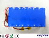 Batería de la vespa 48V12ah LiFePO4 de Ebike de la garantía de la calidad