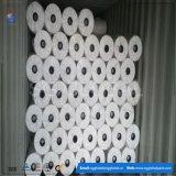 Gesponnenes Gewebe des Weiß-100% pp. Spunbond nicht in Rolls