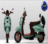 Bateria da E-Bicicleta, jogo da conversão da bicicleta de E, bicicleta elétrica do ciclo de E