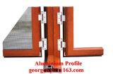 Le profil d'Uminum a parrainé des produits/fournisseurs. Profil en aluminium/en aluminium d'extrusion pour une porte industrielle plus de haute qualité de guichet de profil