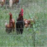 UV обработанная цыплятина полипропилена ловит сетью