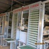 Gute Qualität automatisches der Geflügel-Geräten-kleinen Vögel, die Rahmen-System mit ISO9001 aufziehen