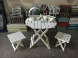접히는 정원 테이블 및 의자 (M-X3061)
