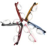 Bunte Form-Art-handgemachtes Azetat Eyewear (2038)