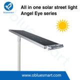 Bluesmart tutto in un indicatore luminoso di via esterno solare d'accensione con il comitato solare