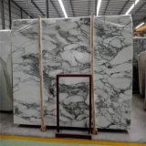 De Witte Marmeren Plak van Italië Arabescato, Witte Marmeren Prijs