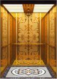 Gearless牽引Vvvfは起点に運転する別荘のエレベーター(RLS-229)を