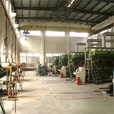 2X5500kw人のHfoの発電所または発電機セット