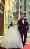 Spitze-Brautballkleid-blosse lange Hülsen-Hochzeits-Kleider Z2013