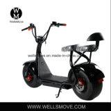 La mejor motocicleta 1000W 60V 35km/H de la energía eléctrica de la rueda grande de la venta 2017