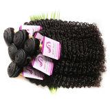 Die brasilianische wellenförmige Menschenhaar-Extension spinnt zusammenrollt 3 preiswertestes 7A 2PCS brasilianisches Jungfrau-Haar der Farbe Ombre Ton-Karosserien-Wellen-1b/4/27