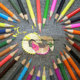 Lápiz del color con la impresión de la insignia en el lápiz y el conjunto