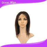 100%년 Virgin 브라질 사람의 모발 Remy 머리 가득 차있는 레이스 가발 (HW-026)