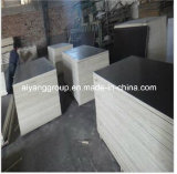 Maderas y Woods/Plywood Manufacturer