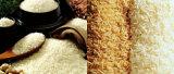 Riz artificiel alimentaire faisant la chaîne de production d'extrudeuse de machines