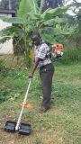 Máquina de excavación motorizada mochila de múltiples funciones del herbicida de los movimientos del motor de gasolina de la alta calidad 4/de la máquina de Weeding